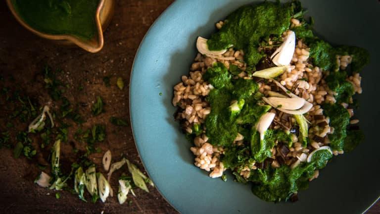 Menu végétarien Félicie Toczé
