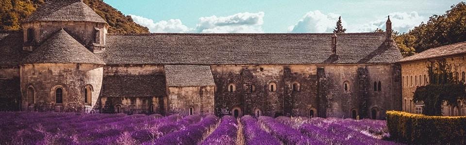 Provence Abbaye Notre Dame de Senanque Lavande