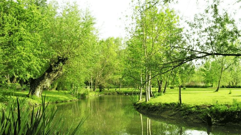 Weekend crossfit dans le Loiret_Moulin de Mousseaux jardin